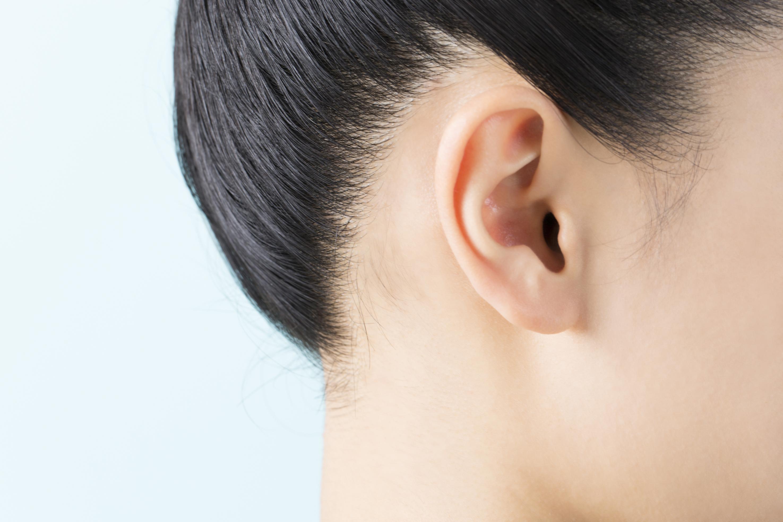 人間の耳のイメージ写真