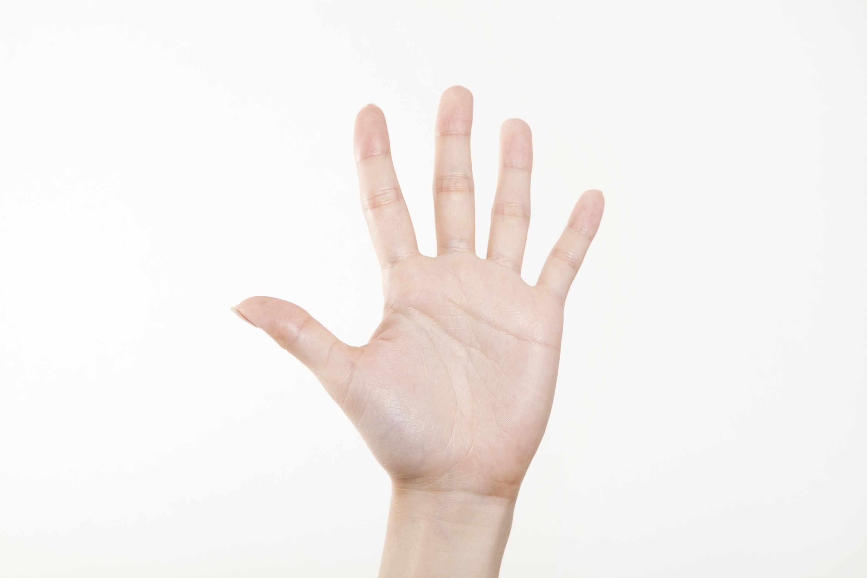 人間の手と指のイメージ写真
